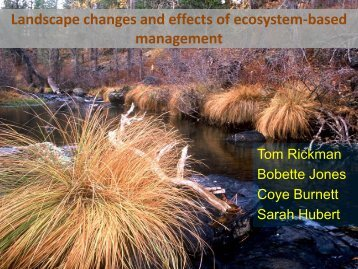 Effects of Ecosystem-Based Forest Management
