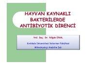 hayvan kaynaklı bakterilerde antibiyotik direnci
