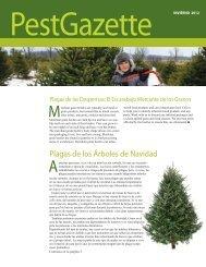 Plagas de los Árboles de Navidad