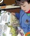 No Pé da Sim, crianças podem gostar de ler! - Fundação Abrinq - Page 7