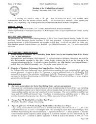 Town Council 11/16/10 Meeting Minutes - the Town of Winfield