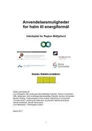 Biobrændselskarakterisering 2004 – Metodeudvikling - Region ...