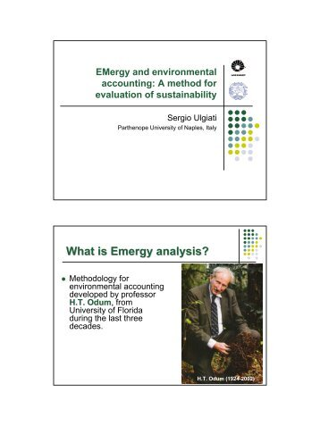 What is Emergy analysis? - FESB