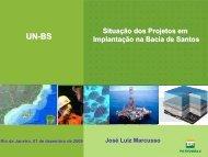 Situação dos Projetos em Implantação na Bacia de Santos - Cogen