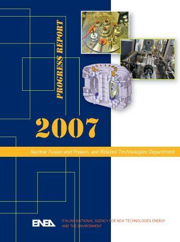 Fusion Programme - ENEA - Fusione