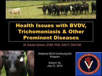 Health Issues with BVDV and Trichomoniasis - Dr. Dan ... - AL BCIA