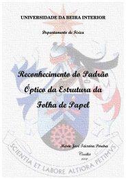 Tese de Doutoramento.pdf - Ubi Thesis