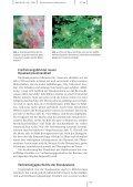 PDF-File (322 KB) - Basler Botanische Gesellschaft - Universität Basel - Page 3
