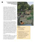 Visionen werden Wirklichkeit - Carsten Sperling - Page 7