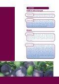 SUSINE - Salvi - Page 2