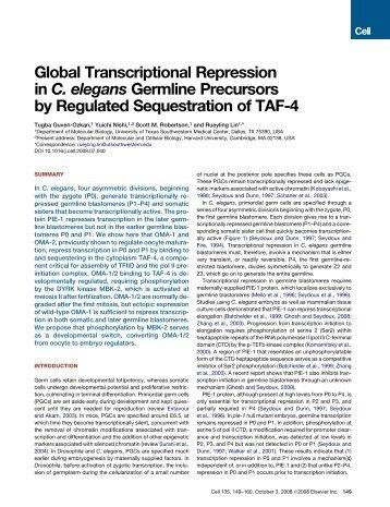 Global Transcriptional Repression in C. elegans ... - UT Southwestern