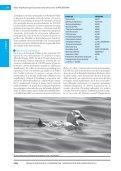 Libro AICAS IMPRENTA FINAL 16 agos.pmd - Aves Argentinas - Page 7