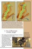 DER OBERRHEINGRABEN - Seite 7
