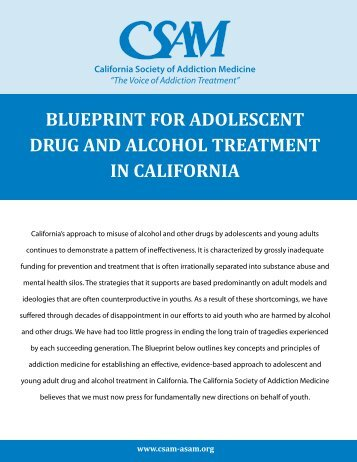 blueprint for adolescent drug and alcohol treatment in california