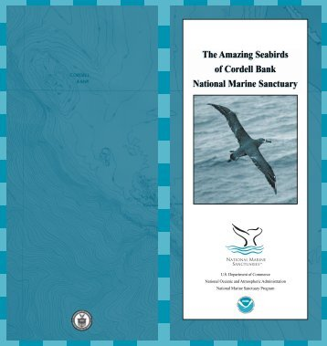NOAA Seabirds Guide 8/25/04 - Cordell Bank National Marine ...
