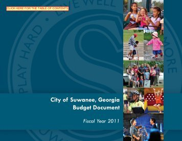 Fiscal Year 2011 Budget Document - Suwanee, Georgia