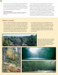 FORESTS ON THE EDGE - USDA Forest Service - Page 4