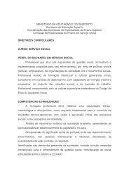 Diretrizes Curriculares - CFESS