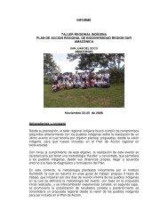 INFORME TALLER REGIONAL INDÍGENA PLAN DE ... - OTCA