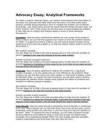 essay on combining nurse leader with advocacy