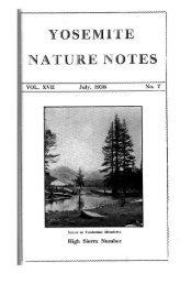 """High Sierra Number"" [PDF] ""Scene in Tuolumne ... - Yosemite"