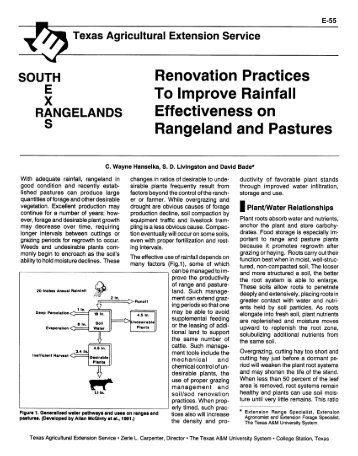 Renovation Practices to Improve Rainfall Effectiveness on ...
