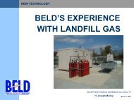 The BELD Fuel Cell