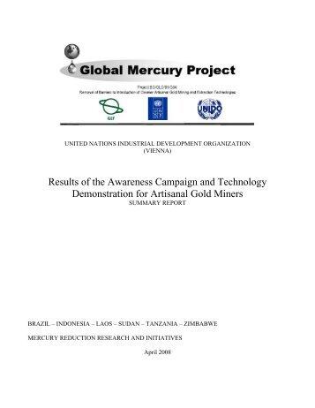 UN_Final_GMP Synopsis Report.doc