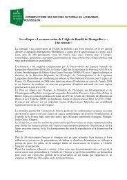 Le colloque Â« La conservation de l'Aigle de Bonelli de Montpellier ...