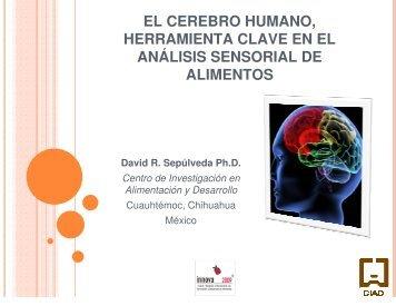 el cerebro humano, herramienta clave en el análisis sensorial de ...