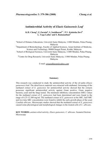 Antimicrobial screening of calabash leaf extracts