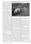 Knäledsproblem hos hund, del 1 Det händer så lätt… - Doggy Rapport - Page 5