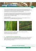 to view pdf - Foundation for Arable Research - Page 2