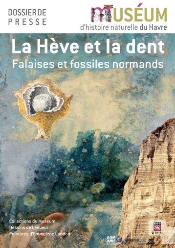 Falaises et fossiles normands - Musées en Haute-Normandie