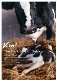 Dark Side of Dairy report 2014