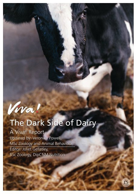 Dark Side of Dairy report 2014