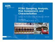 PCBs: Sampling, Analysis, Risk Assessment, and Characterization