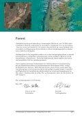 Områdeprogram for Alnabruområdet - Plan - Page 2