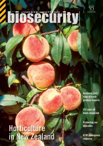 AVOCADOS - Biosecurity New Zealand