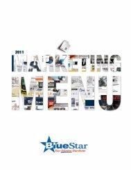 TIP - BlueStar