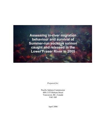 2005+Sockeye+Report+.. - Watershed Watch Salmon Society