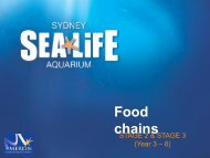 Food chains - Sydney Aquarium
