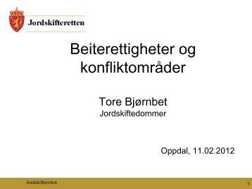 Beiterettigheter og konfliktområder - Norsk Sau og Geit