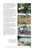 HOPE Case Studies - Andhra Pradesh Academy of Rural ... - Page 5