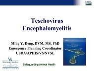 Teschovirus Encephalomyelitis - Caribvet