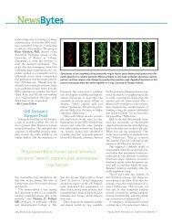 NewsBytes NewsBytes - Biomedical Computation Review