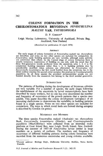 Gordon, D. P., 1971. Colony formation in the cheilostomatous ...