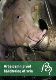 Arbejdsmiljø ved håndtering af svin - BAR - jord til bord.