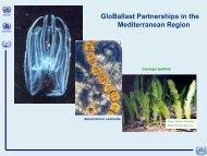 GloBallast in the Mediterranean region - rempec