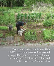 climate help from the plant world - Global Warming Solutions: A ...